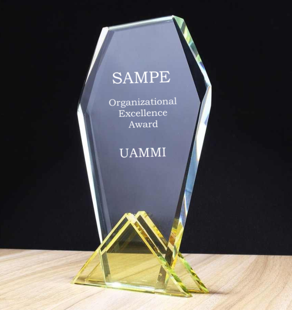 "UAMMI Wins SAMPE'S Prestigious  ""Organizational Excellence"" Award"